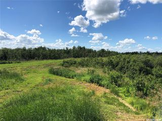 Photo 5: 3 Rural Address in Rosthern: Lot/Land for sale (Rosthern Rm No. 403)  : MLS®# SK815748