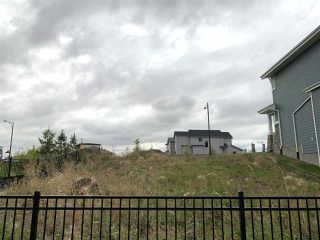 Photo 6:  in Edmonton: Zone 55 Vacant Lot for sale : MLS®# E4214376