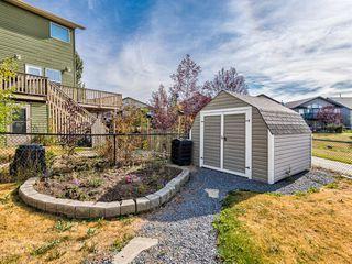 Photo 44: 112 HILLCREST Cape: Strathmore Detached for sale : MLS®# A1036219