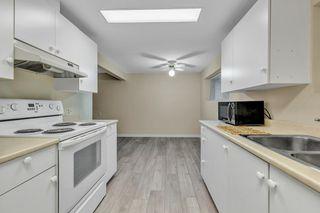 Photo 25: 10865 BRANDY Drive in Delta: Nordel House for sale (N. Delta)  : MLS®# R2519942