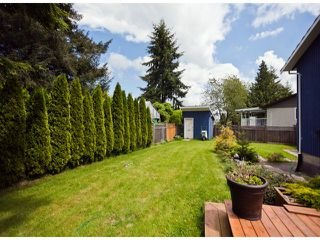 Photo 9: 9563 125A Street in Surrey: Queen Mary Park Surrey House for sale : MLS®# F1311655