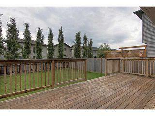 Photo 16: 23 AUBURN BAY Place SE in CALGARY: Auburn Bay Residential Detached Single Family for sale (Calgary)  : MLS®# C3572097