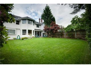 Photo 20: 6731 LINDEN Ave in Burnaby South: Highgate Home for sale ()  : MLS®# V1011556