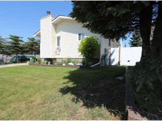 Photo 17: 12 BIG SPRINGS Drive SE: Airdrie Residential Detached Single Family for sale : MLS®# C3626239