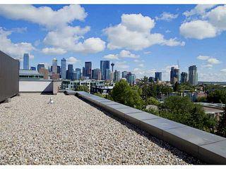 Photo 18: 207 333 22 Avenue SW in CALGARY: Mission Condo for sale (Calgary)  : MLS®# C3628832