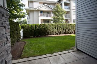Photo 13: 104 19340 65 AVENUE in Surrey: Clayton Condo for sale (Cloverdale)  : MLS®# R2014619