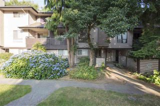 Photo 1: 10532 HOLLY PARK LANE in Surrey: Guildford Townhouse for sale (North Surrey)  : MLS®# R2293306
