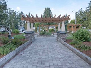 "Photo 19: 417 2565 CAMPBELL Avenue in Abbotsford: Central Abbotsford Condo for sale in ""Abacus Uptown"" : MLS®# R2396426"