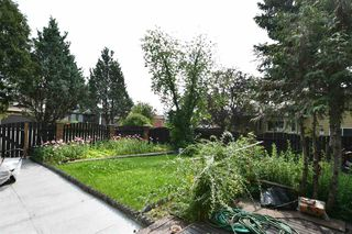 Photo 9: 2318 111A Street in Edmonton: Zone 16 House for sale : MLS®# E4170091