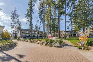 "Photo 1: 10 5957 152 Street in Surrey: Sullivan Station Townhouse for sale in ""PANORAMA STATION"" : MLS®# R2423282"