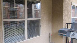 Photo 16: 217 11445 ELLERSLIE Road in Edmonton: Zone 55 Condo for sale : MLS®# E4195484