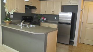 Photo 5: 217 11445 ELLERSLIE Road in Edmonton: Zone 55 Condo for sale : MLS®# E4195484