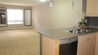Photo 4: 217 11445 ELLERSLIE Road in Edmonton: Zone 55 Condo for sale : MLS®# E4195484