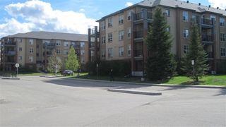 Photo 28: 217 11445 ELLERSLIE Road in Edmonton: Zone 55 Condo for sale : MLS®# E4195484