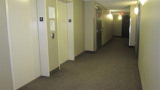 Photo 21: 217 11445 ELLERSLIE Road in Edmonton: Zone 55 Condo for sale : MLS®# E4195484