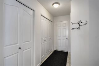 Photo 19:  in Edmonton: Zone 55 House for sale : MLS®# E4199673