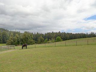 Photo 1: 5797 Oldfield Rd in Saanich: SW Elk Lake House for sale (Saanich West)  : MLS®# 843591