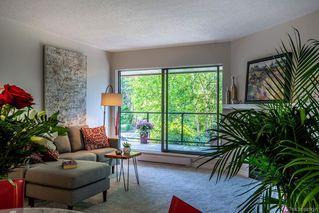 Photo 7: 201 420 Parry St in Victoria: Vi James Bay Condo Apartment for sale : MLS®# 845127