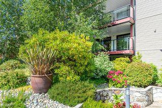 Photo 41: 201 420 Parry St in Victoria: Vi James Bay Condo Apartment for sale : MLS®# 845127