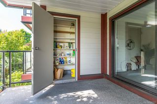 Photo 34: 201 420 Parry St in Victoria: Vi James Bay Condo Apartment for sale : MLS®# 845127