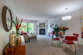 Photo 4: 201 420 Parry St in Victoria: Vi James Bay Condo Apartment for sale : MLS®# 845127