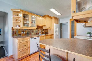 Photo 16: 712 MAPLETON Drive SE in Calgary: Maple Ridge Detached for sale : MLS®# A1018735