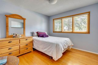 Photo 24: 712 MAPLETON Drive SE in Calgary: Maple Ridge Detached for sale : MLS®# A1018735