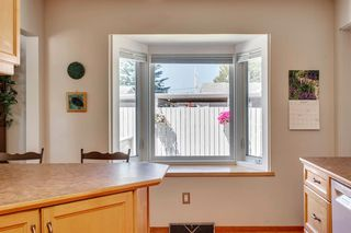 Photo 18: 712 MAPLETON Drive SE in Calgary: Maple Ridge Detached for sale : MLS®# A1018735