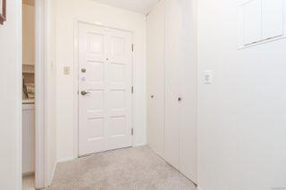Photo 6: 305 360 Dallas Rd in : Vi James Bay Condo for sale (Victoria)  : MLS®# 862176