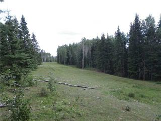 Photo 19: 2 miles west of Dartique Hall in COCHRANE: Rural Rocky View MD Rural Land for sale : MLS®# C3545361