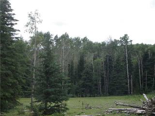 Photo 18: 2 miles west of Dartique Hall in COCHRANE: Rural Rocky View MD Rural Land for sale : MLS®# C3545361