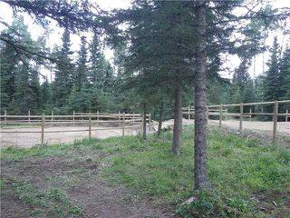 Photo 7: 2 miles west of Dartique Hall in COCHRANE: Rural Rocky View MD Rural Land for sale : MLS®# C3545361