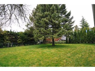 Photo 9: 696 POPLAR Street in Coquitlam: Central Coquitlam House for sale : MLS®# V999074