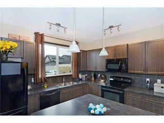 Photo 8: 151 SKYVIEW SPRINGS Gardens NE in CALGARY: Skyview Ranch Residential Detached Single Family for sale (Calgary)  : MLS®# C3630577