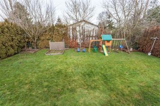 Photo 19: 17207 61A AVE in Cloverdale: Cloverdale BC House for sale : MLS®# R2026581