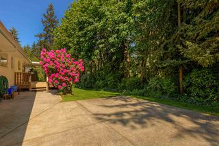 Photo 18: 969 BAYVIEW SQUARE in Coquitlam: Harbour Chines House for sale : MLS®# R2066738