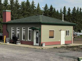 Photo 9: 54313 RGE RD 260: Rural Sturgeon County House for sale : MLS®# E4165824