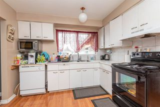 Photo 6: 10624 151 Street in Edmonton: Zone 21 House for sale : MLS®# E4177831