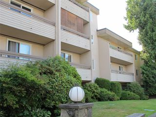 Photo 2: 102 3235 Quadra St in : SE Maplewood Condo for sale (Saanich East)  : MLS®# 856016