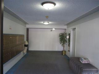 Photo 5: 102 3235 Quadra St in : SE Maplewood Condo for sale (Saanich East)  : MLS®# 856016
