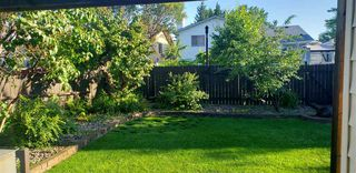 Photo 3: 4224 30 Avenue NW in Edmonton: Zone 29 House for sale : MLS®# E4219718