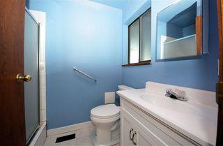Photo 8: 20787 CAMWOOD Avenue in Maple Ridge: Southwest Maple Ridge House for sale : MLS®# R2528774