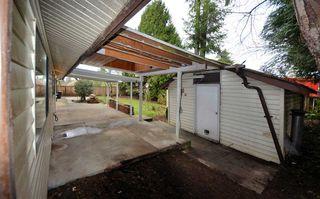 Photo 15: 20787 CAMWOOD Avenue in Maple Ridge: Southwest Maple Ridge House for sale : MLS®# R2528774