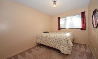 Photo 9: 20787 CAMWOOD Avenue in Maple Ridge: Southwest Maple Ridge House for sale : MLS®# R2528774