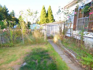 Photo 7: 21821 124TH Avenue in Maple Ridge: West Central Manufactured Home for sale : MLS®# V971060