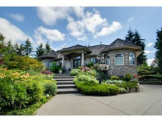 Main Photo: 1112 196A Street in Langley: Campbell Valley House for sale : MLS®# F1417274
