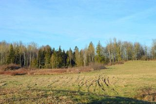 Photo 3: 30169 MARSHALL ROAD in Abbotsford: Abbotsford West Land for sale : MLS®# R2000064