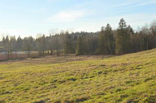 Photo 6: 30169 MARSHALL ROAD in Abbotsford: Abbotsford West Land for sale : MLS®# R2000064