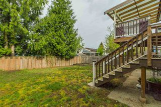 Photo 20: 2909 BABICH STREET in Abbotsford: Central Abbotsford House for sale : MLS®# R2056540