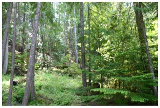 Photo 12: Lot 9 Kali Bay in Eagle Bay: Kali Bay House for sale (Shuswap Lake)  : MLS®# 10125666